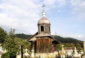 biserica_domneasca1